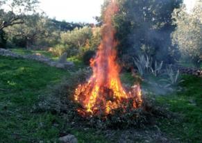 usage_du_feu